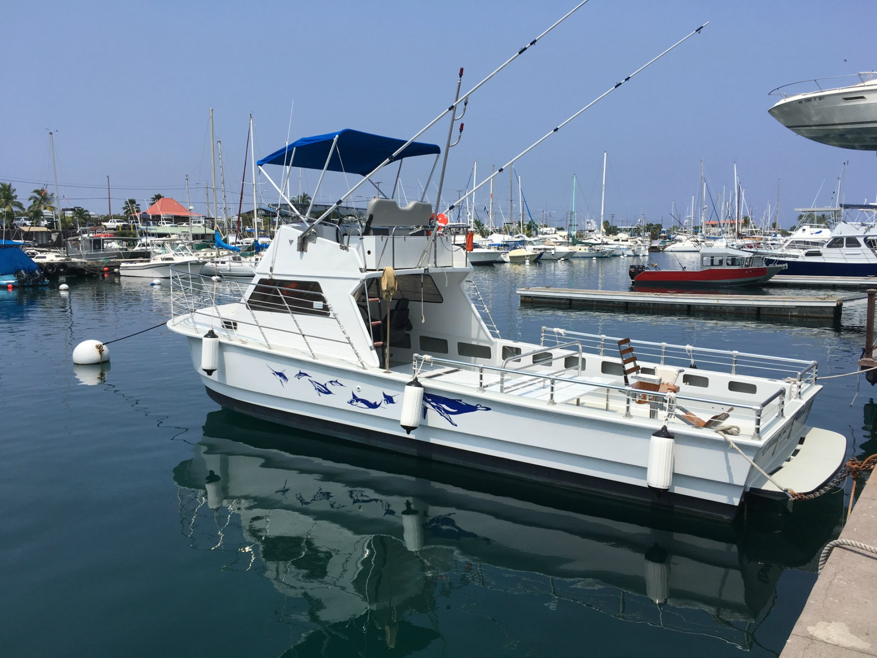 Private Charter II   Ocean Encounters